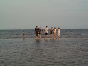 Enjoying the water - it was shallow so they could run a fair distance out!